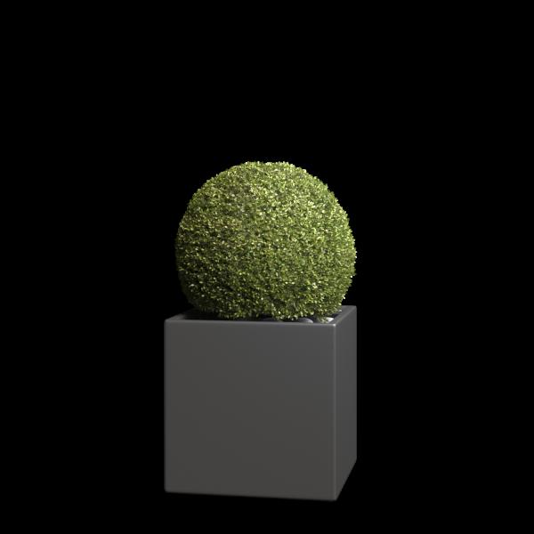 Bloempot Kubus Medium in Anthracite